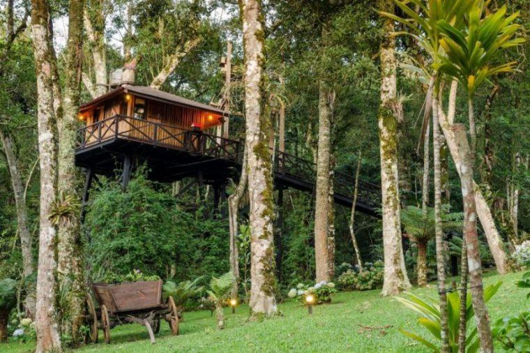 Casa na Árvore - Foto: site Airbnb
